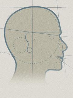 perfil-seccion-prueba